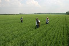 Agricoltura della famiglia Fotografie Stock