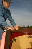 Agricoltura della famiglia Fotografia Stock Libera da Diritti