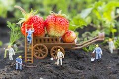 Agricoltura della gente del giocattolo Immagini Stock