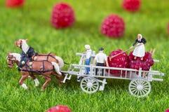 Agricoltura della gente del giocattolo Fotografie Stock Libere da Diritti