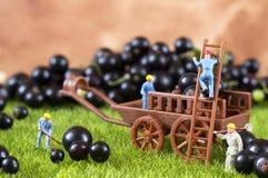 Agricoltura della gente del giocattolo Fotografia Stock