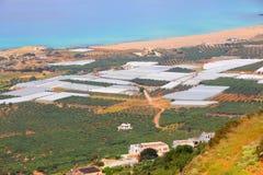 Agricoltura della Grecia Fotografia Stock