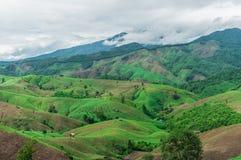 Agricoltura della montagna Immagine Stock Libera da Diritti