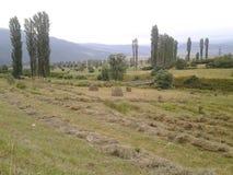 Agricoltura della montagna della natura Fotografie Stock