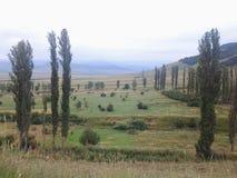 Agricoltura della montagna della natura Fotografia Stock