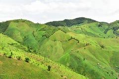 Agricoltura della montagna nel distretto di Chaloem Phra Kiat Fotografia Stock