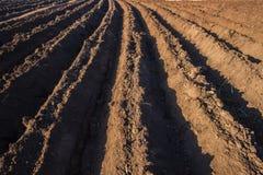 Agricoltura della piantatura arata del suolo della terra Immagine Stock Libera da Diritti