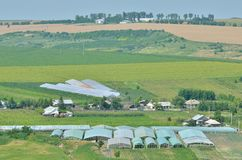 Agricoltura della serra Immagine Stock Libera da Diritti