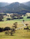 Agricoltura della Tasmania Fotografia Stock Libera da Diritti
