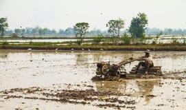 Agricoltura della terra Immagini Stock