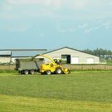 Agricoltura della valle Canada di Fraser Fotografia Stock Libera da Diritti