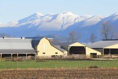 Agricoltura della valle della montagna Immagine Stock Libera da Diritti