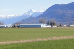 Agricoltura della valle della montagna Fotografia Stock Libera da Diritti