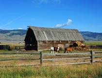 Agricoltura della valle di paradiso Fotografia Stock Libera da Diritti