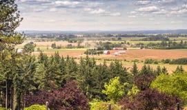 Agricoltura della valle di Willamette della campagna dell'Oregon Fotografia Stock Libera da Diritti