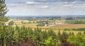 Agricoltura della valle di Willamette della campagna dell'Oregon Immagini Stock Libere da Diritti