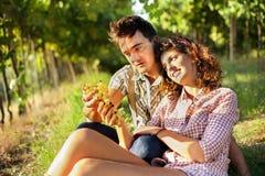 Agricoltura delle coppie che si rilassano dopo il raccolto dell'uva Immagini Stock Libere da Diritti