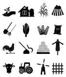 Agricoltura delle icone Fotografie Stock Libere da Diritti
