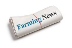 Agricoltura delle notizie Fotografie Stock Libere da Diritti