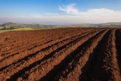 Agricoltura delle stagioni arate della pianta della terra Fotografia Stock Libera da Diritti