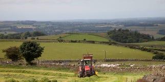 Agricoltura delle viste intorno a Snowdonia Fotografia Stock Libera da Diritti