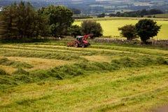 Agricoltura delle viste intorno a Snowdonia Fotografie Stock Libere da Diritti