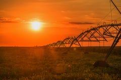 Agricoltura dello spruzzatore del perno di irrigazione Fotografia Stock