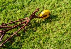 Agricoltura dello strumento Immagine Stock Libera da Diritti
