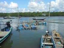 Agricoltura di acquacoltura della gabbia Immagine Stock Libera da Diritti