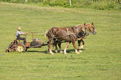 Agricoltura di Amish Fotografia Stock
