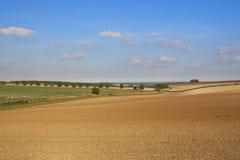 Agricoltura di autunno Fotografie Stock