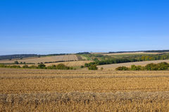 Agricoltura di autunno Fotografia Stock
