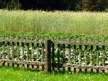Agricoltura di camion (giardino) Immagini Stock