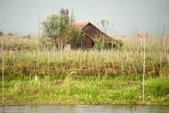 Agricoltura di galleggiamento nel lago Inle, Myanmar Fotografia Stock Libera da Diritti