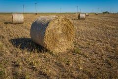 Agricoltura di Midwest Fotografia Stock Libera da Diritti