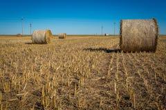 Agricoltura di Midwest Immagini Stock Libere da Diritti