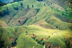 Agricoltura di montagna in Tailandia Immagini Stock Libere da Diritti