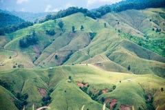 Agricoltura di montagna in Tailandia Fotografie Stock Libere da Diritti
