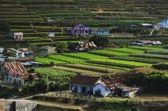 Agricoltura di montagne centrali vietnamita Fotografie Stock Libere da Diritti