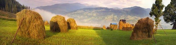 Agricoltura di sussistenza alpina Fotografie Stock Libere da Diritti