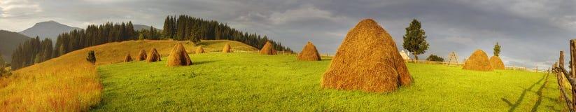Agricoltura di sussistenza alpina Immagini Stock Libere da Diritti