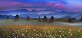 Agricoltura di sussistenza alpina Immagine Stock Libera da Diritti