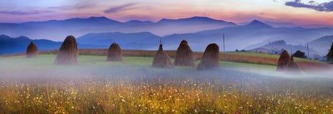 Agricoltura di sussistenza alpina Immagine Stock