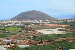 Agricoltura di Tenerife Immagini Stock