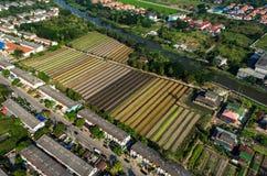 Agricoltura di verdure organica, fotografia aerea di agricoltura Fotografia Stock