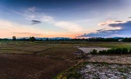 Agricoltura di vista Fotografie Stock Libere da Diritti