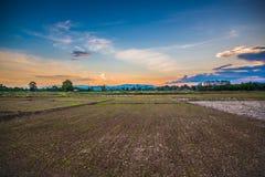 Agricoltura di vista Fotografia Stock