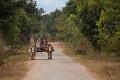 Agricoltura e agricoltori nel Myanmar Immagini Stock
