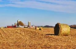Agricoltura e fondo di azienda agricola Fotografia Stock