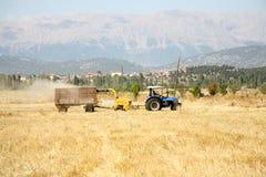 Agricoltura e trattore Immagine Stock